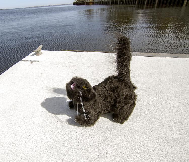 Visual Bird Deterrent Gulls Gotta Go Gullcat