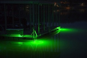 Hydro Glow DS 100 Underwater LED Dock Lighting Fish Light - Color Green with 50' cord