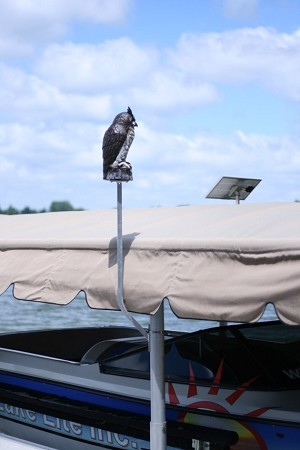 Lake Lite Boat Lift Great Horned Owl Scare Kit